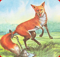 A Moral Story : The Fox Without Tail