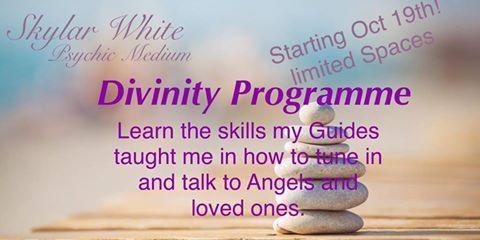 The Divinity Program by Skyla White