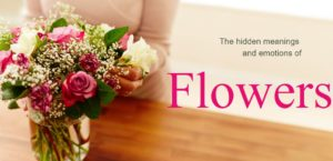 The hidden meanings and emotions of Flowers