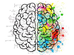 How our brains know when something's different
