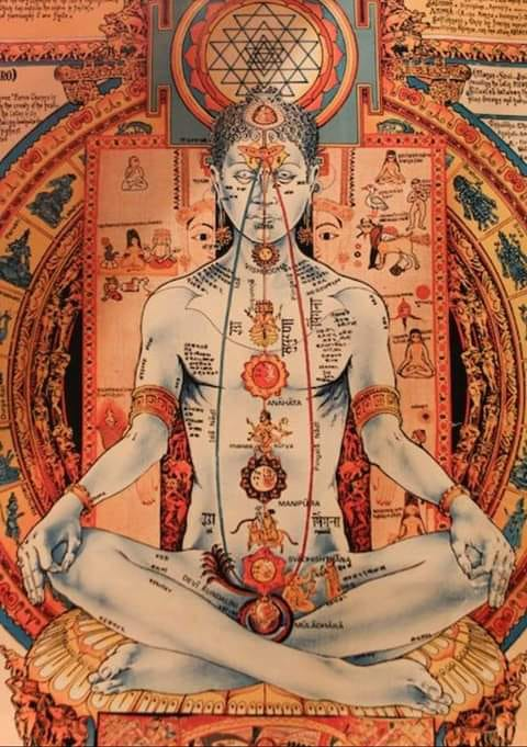 You are currently viewing No, you cannot heal your own chakras!