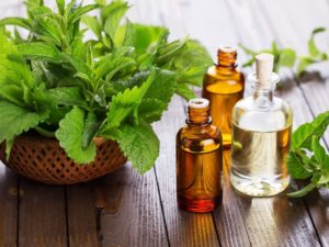 6 Ways to Incorporate Essential Oils in Your Home