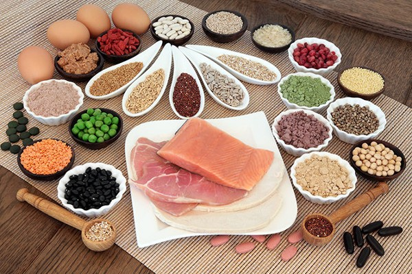 What Are The Differences Between Meat, Soy, Whey, Dairy, Hemp and Other Proteins?