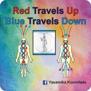 RED TRAVELS UP – BLUE TRAVELS DOWN- – says Yasamika Koombala